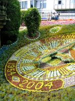 Flower Clock Part 2 by Fea-Fanuilos-Stock