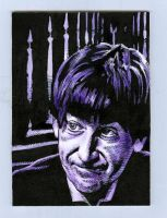 The Second Doctor by Herbarianband