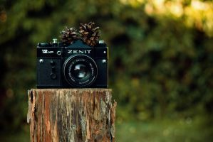 Woody Zenit by joiedevivre89