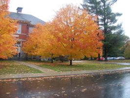 Fall in Bennington Vermont 1 by TheGreatWiseAss
