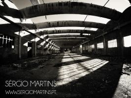 Industrial Ruin by sergiomartins
