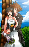Soxion Day:Destiny Wedding by Kiome-Yasha