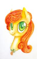 Golden Harvest (Carrot Top) by 0okami-0ni