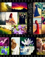 Lightroom Preset Pack - Nature by MakeItColourful