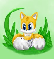 baby tails by Paumol