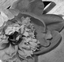 bw flower by dontbemad