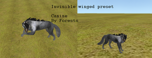 Transparent winged wolf. by Forests-FH