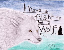 I Have a Right to be a Wolf by Sausis