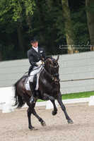 Dressage - II by Summerly