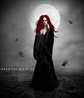 Black Butterfly's by GregoryNicolas