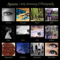 Summary of Photography 2013 by Ayaneria