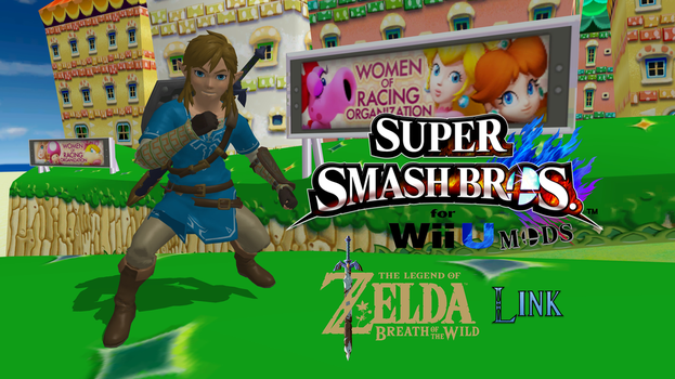Smash 4 Mods - Breath of the Wild Link by FatalitySonic2