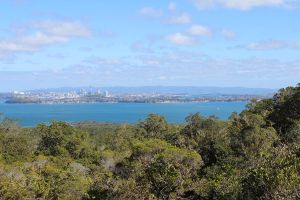 Auckland from Rangitoto by drumgirl67