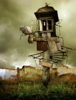 Bird House by MachineRoom