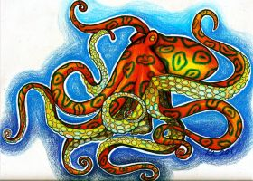 Octopus by knezak