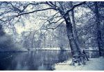_winterland. by Bloddroppe-nature