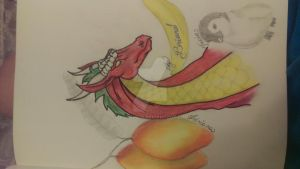 Dragons penguins and mangos oh my! by raven0048