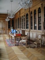 Old library by MaxOKryn