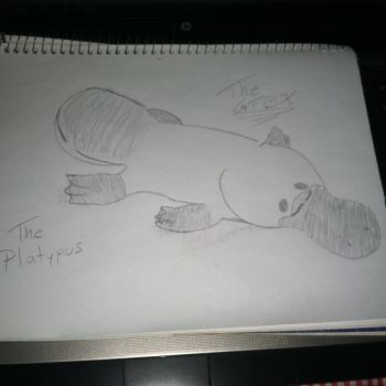 Platypus in the Graphite by TheGTBX