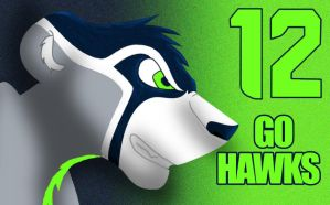 New Seahawks design by Lufca