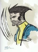 DSC Wolverine by CartoonCaveman