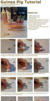 Guinea Pig Tutorial by insanable