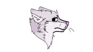 Tries to draw a wolf after long time by SonilverFanForever