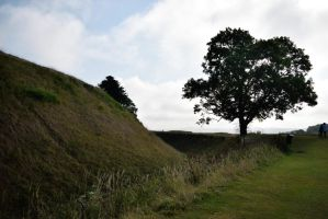 DSC 0140 Old Sarum Hill Fort 2 by wintersmagicstock