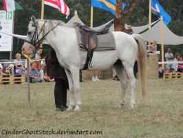 Hungarian Festival Stock 026 by CinderGhostStock
