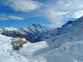 View from the Jungfraujoch by artamusica