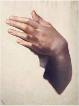 Hand Study 2 Day #23 by AngelGanev