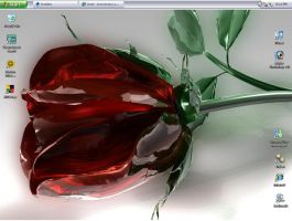 Anniversary Rose Desktop by zamba