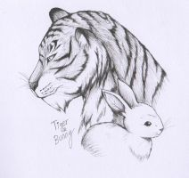 Tiger and Bunny by Evelynism
