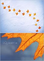 Autumn is gone by LiiQa