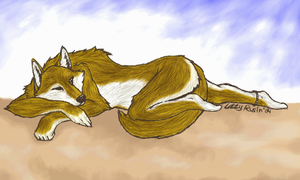 beachside wolfe by Lizeh