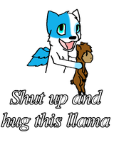 Shut Up And Hug This Llama by krxterme