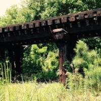 Trestle2 by The-Feral-Child