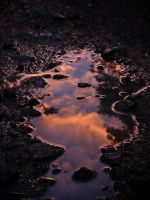 Puddle by MTP9