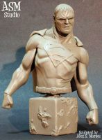 Bizarro Mini Bust - pic1 by ASM-studio