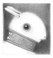 bunny 6 by reneefrench