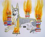 Burn The Pages by Huskypawz