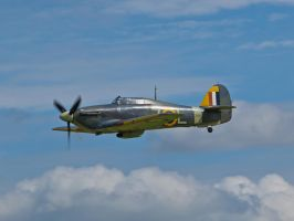 Sea Hurricane - June Airshow Old Warden by davepphotographer