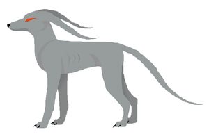Grey Whiphound by CherrySapphire