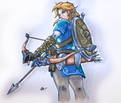 Link - Breath of the Wild by baweaver