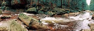 Wild water - panorama by FrantisekSpurny