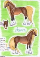 Reference Sheet Rowan by viviwonda