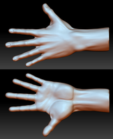Hand Study by draywin848