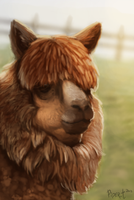 DAY 24. Photo Study - Alpaca (35 Minutes) by Cryptid-Creations