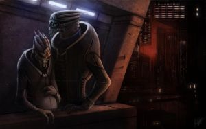 Turian Couple by Sythgara