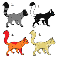free cat adoptables by BrownkitBrownclaw